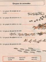 ANIMALES-Grupos-de-animales